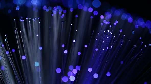 Thumbnail for Optical fibers network cable