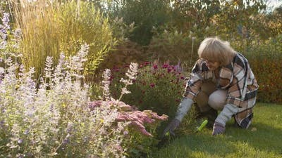 Old Caucasian Woman Gardening