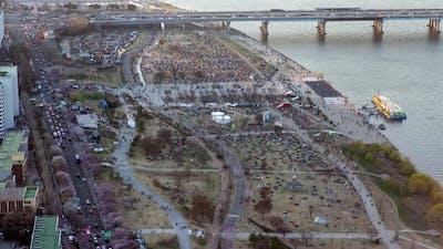 Aerial View of Seoul Cherry Blossom Korea Festival