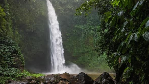 Thumbnail for Tropical Waterfall in Lush Green Jungle. Falling Water Hitting Water Surface. Bali, Indonesia