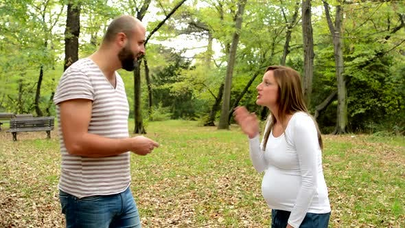 Thumbnail for Young Pretty Pregnant Woman and Handsome Man Argue Together in Park - Outdoor