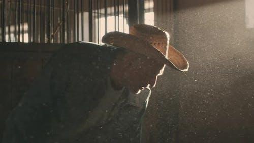 Senior Man Working in Dusty Barn in Ray of Light