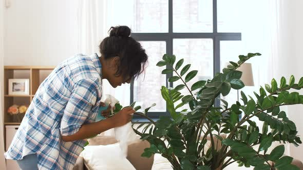 Thumbnail for Happy Woman Cleaning Houseplant at Home