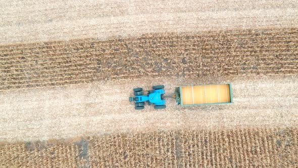 Thumbnail for Aerial View of Tractor Transporting Corn Cargo at Field During Harvesting, Flying Over Agricultural