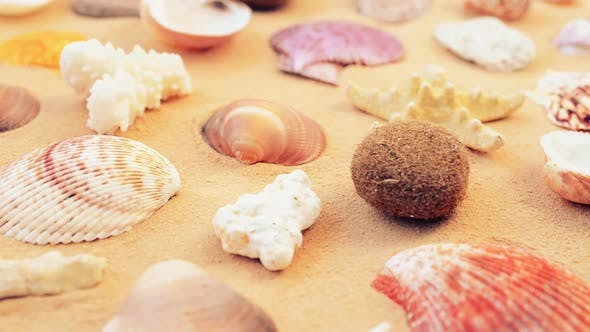 Thumbnail for Beach 14