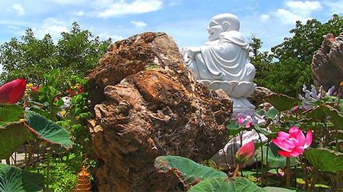 Buddha And Lotus