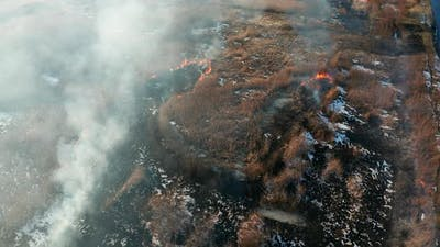 Aerial View of Wildfire on the Field