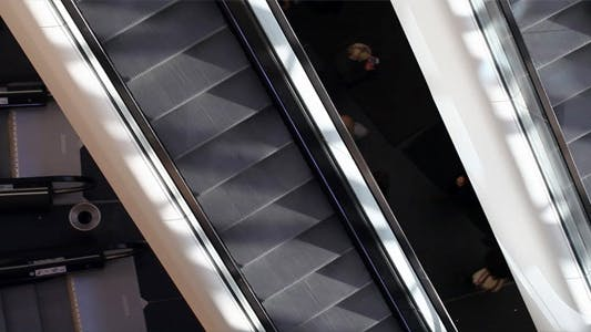 Cover Image for Escalator