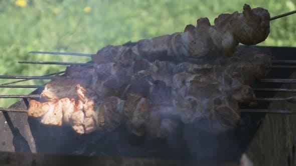 Cooking Shish Kebab Outdoor