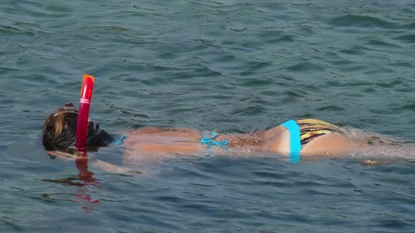 Thumbnail for Snorkelling in the Clear Turquoise Water
