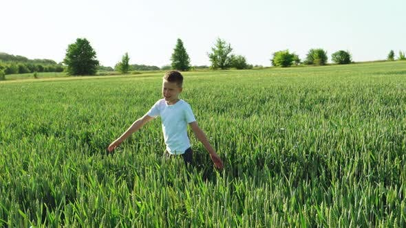 Thumbnail for Child is Spinning Around Himself on the Background of a Green Field with Wheat Spikelets