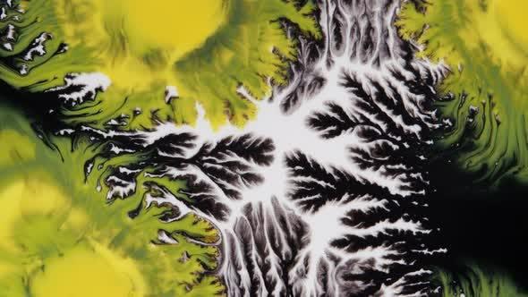 Crystal Germination