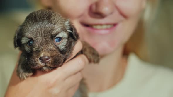 Thumbnail for Happy Woman Holding a Little Puppy in Her Arms