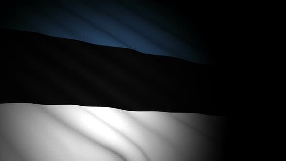 Thumbnail for Estonia Flag Blowing in Wind