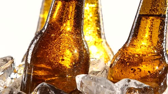 Thumbnail for Festival of Beer Capacity Are Bottles of Beer in the Ice, White Background
