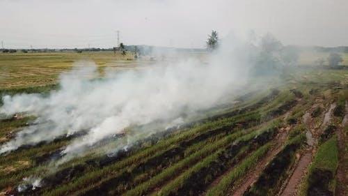 Open fire cause smoke emission