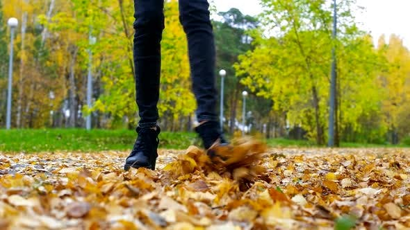 Thumbnail for Slim Girl Legs in Black Jeans Play with Dry Yellow Foliage