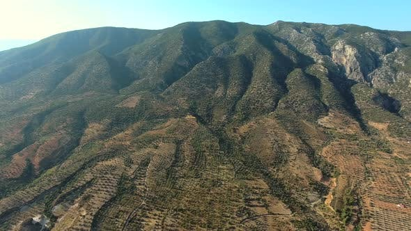 Thumbnail for Sparse Orchard in Hot Mediterranean Mountain