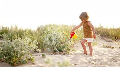 Cute Little Boy Watering Plants with Can on Sandy Beach