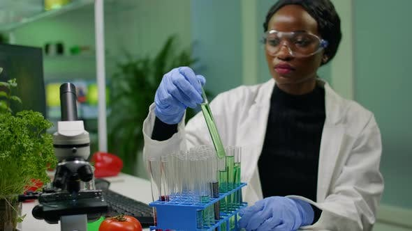 African Botanist Researcher Checking Test Tubes with Dna Test Liquid