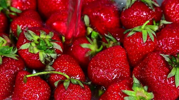 Thumbnail for Washing red ripe fresh strawberry berries with water