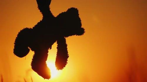 Ein Kind hält ein mörderischer Bär durch die Pfote gegen die untergehende Sonne und Orange Himmel