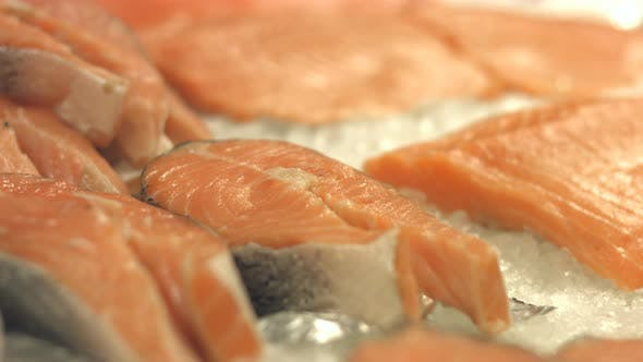 Thumbnail for Salmon Steaks and Salmon Fillet - Pack of 3