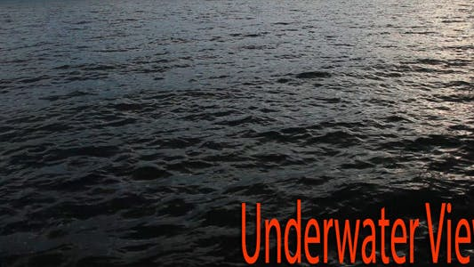 Thumbnail for Underwater View