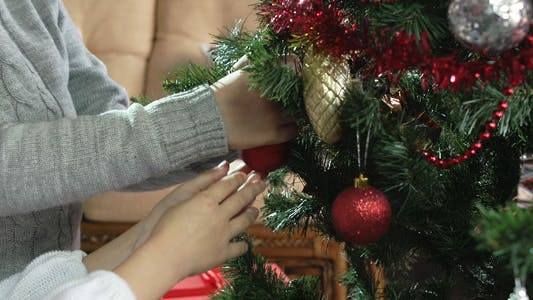 Thumbnail for Holiday Decoration