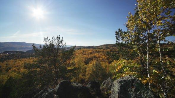 Thumbnail for Sun Rays Through The Autumn Forest