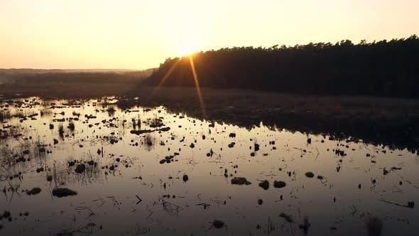 Thumbnail for Sunset On Wild Swamp