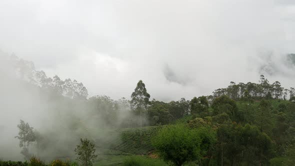 Time lapse cloudy moving over a tea plantations in Sri lanka