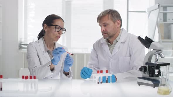 Thumbnail for Portrait of Biomedical Scientists in Lab