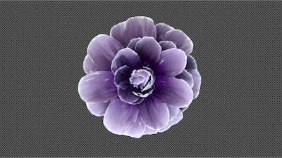 Spinning Flower