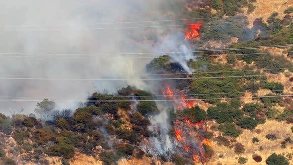 Thumbnail for Maria Fire. Burning California Wooded Hills Aerial View. Massive Forest Burnout.