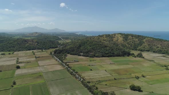 Cover Image for Farm Fields Near the Sea