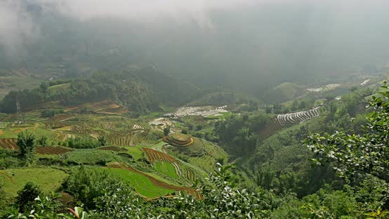 Terraced Rice Paddies In Northern Vietnam