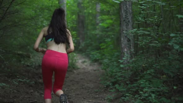 Thumbnail for Following Female Jogger Running at Forest Path in Deep Forest