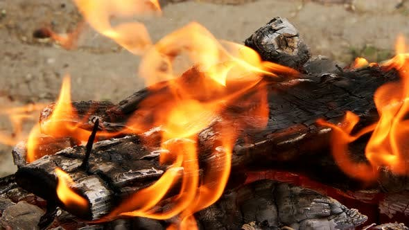 Wooden Fire and Flames Like Hell