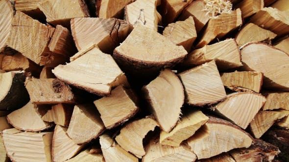 Thumbnail for Firewood to Winter