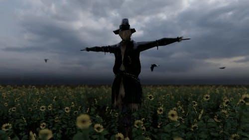 Birds Flying Around the Scarecrow