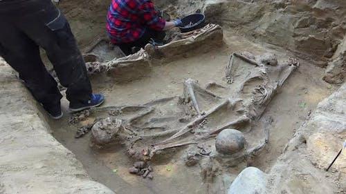 Massengrab oder archäologische Ausgrabungen 3