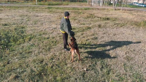 A Trained Dog Attacking Trainer's Arm