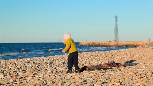 Thumbnail for Little Boy on Pebble Beach
