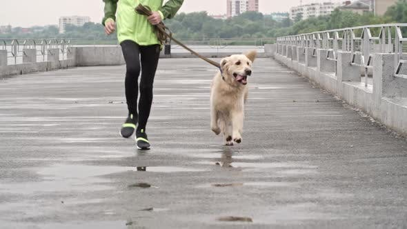 Thumbnail for Teenage Boy and Cute Labrador on a Run