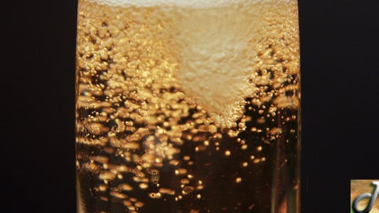 Cover Image for Champagne Bubbles