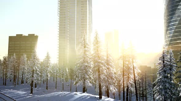 Thumbnail for City and Forest in Snow