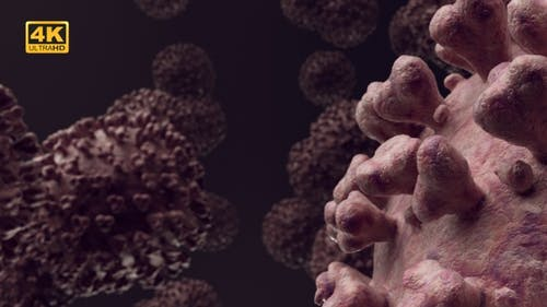 Covid-19 Coronavirus - 4K
