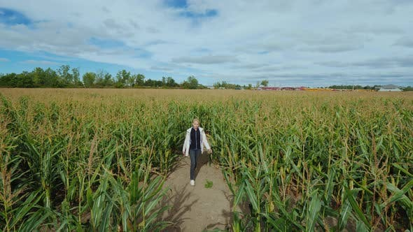 Cover Image for A Middle-aged Woman Got Lost in a Corn Maze Trying To Find the Right Way
