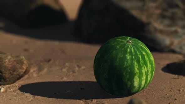 Große und saftige Wassermelone am Strand Sand